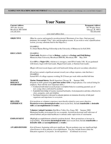format of resume for experienced lecturer indian school resume resume ideas
