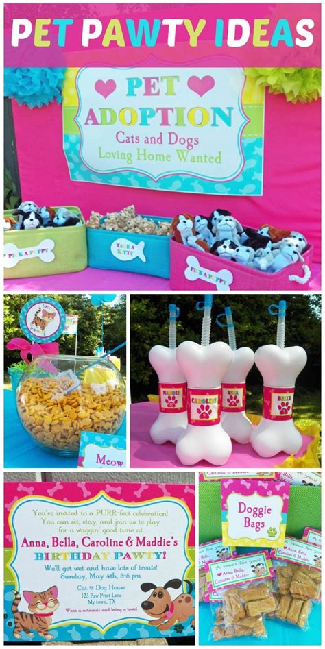 dog themed birthday games what a fun cat and dog quot pawty quot in a pink and blue color