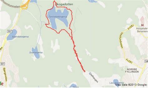 len toom experience walking in bergen liisi toom