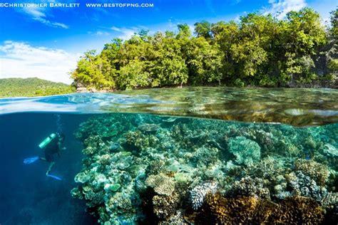 dive resort tawali leisure dive resort travel the coral triangle