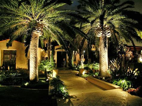 Palm Trees For Backyard by Gorgeous Outdoor Lighting Plan Landscape Design And