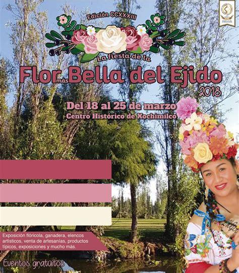 la flor ms bella del co fiesta de la flor m 225 s bella del ejido 2018 191 d 243 nde hay feria