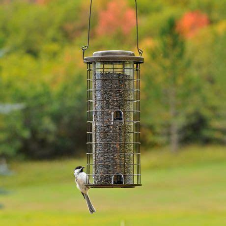 perky pet squirrel stumper wild bird feeder walmart ca