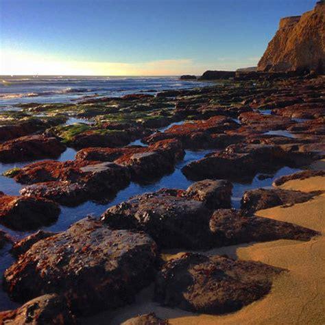 tide santa cruz top spots to tide pool in santa cruz county visit santa