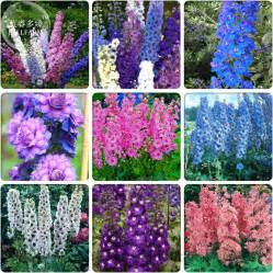 Types Of Garden Flowers Popular Beautiful Flower Types Buy Cheap Beautiful Flower Types Lots From China Beautiful Flower