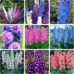 Garden Flower Types Popular Beautiful Flower Types Buy Cheap Beautiful Flower Types Lots From China Beautiful Flower