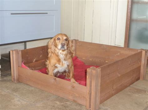 whelping puppies fsc wooden puppy whelping box bed high quality flat pack timber litter ebay