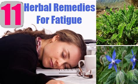 11 herbal remedies for fatigue treatments