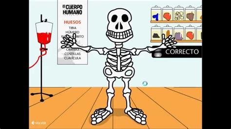 imagenes educativas del cuerpo humano juego del cuerpo humano youtube