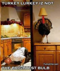 Funny Pictures About Thanksgiving Funny Pictures Of Thanksgiving Turkeys Taxes Town And