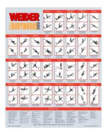 7 best images of weider 6900 exercise chart weider pro