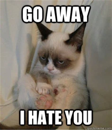 I Hate You Meme - image gallery i hate you meme