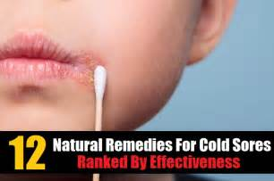 home remedies for a cold sore 12 home remedies for cold sores ranked by effectiveness