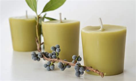 Bayberry Candles The 3 Foragers Foraging For Organic Food