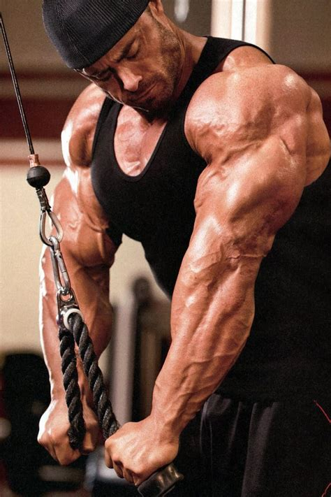 lou ferrigno max bench press 100 lou ferrigno max bench press 33sdsdc by vdfvdfv