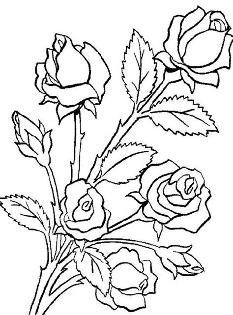 Bouquet Of Roses Coloring Pages Bouquet Roses Coloring Pages