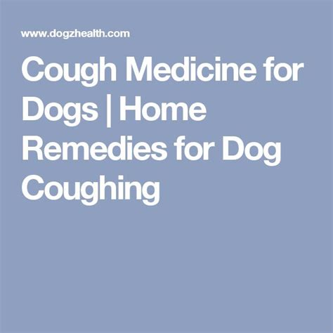 cough medicine for dogs best 25 cough medicine for dogs ideas on keeps coughing my keeps