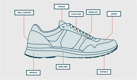 Of The Shoes by Shoe Anatomy Human Anatomy
