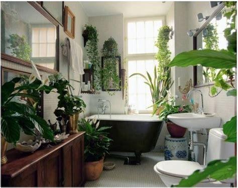 small indoor garden design ideas amazing architecture