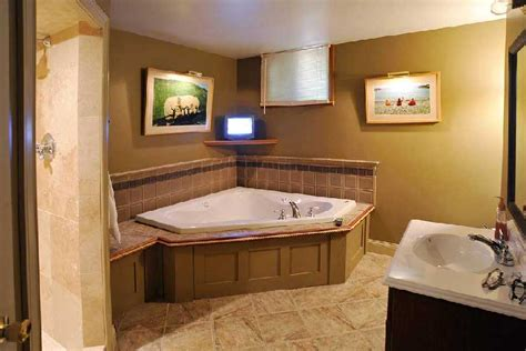 Basement Bathroom Renovation Ideas Basement Renovations Ideas Bathroom Decor Grezu Home Interior Decoration