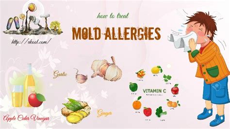 how to treat allergies top 10 ways on how to treat mold allergies naturally