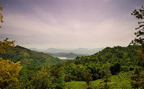 pictures sri lanka nature fields forests scenery