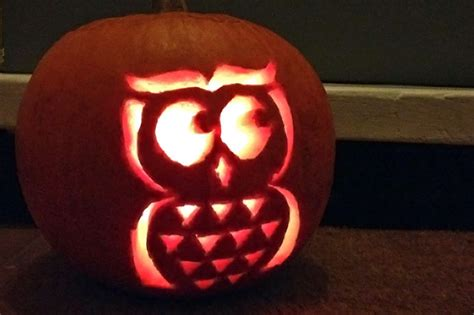 printable owl pumpkin carving template hobbycraft blog