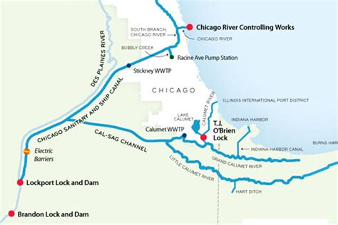 chicago river map despite dna evidence no asian carp in chicago river says