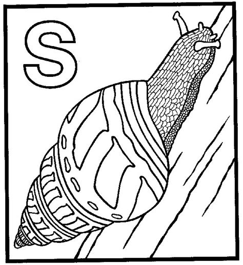 Snail Colouring Pages Snail Coloring Pages Coloringpagesabc Com by Snail Colouring Pages