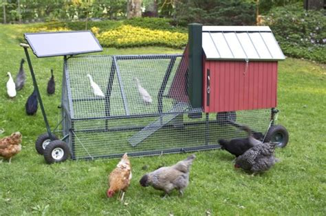 Mobile Chicken Shed by 214 Rnek K 252 Mes Modelleri Resimli