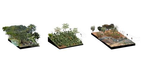 imagenes png vegetacion tropicario de bogot 225 l a p