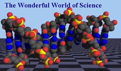 an introduction to the wonderful world of robotics science book for children s science education books books the wonderful world of science