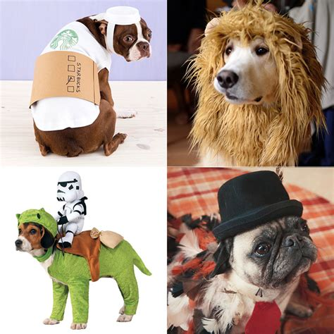 halloween themes with dogs funny halloween costumes for dogs instyle com
