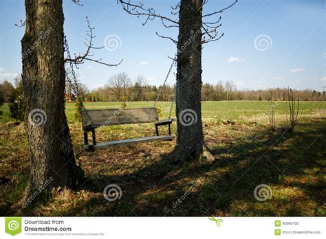 hanging a swing between two trees comfortable swing bench between two trees stock photo
