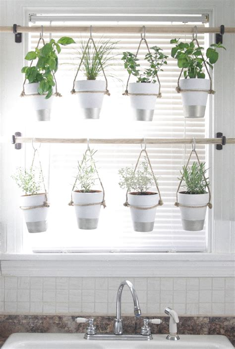 Window Plant Hanger - diy indoor hanging herb garden learn how to make an