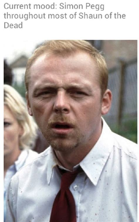 simon pegg memes 33 current mood memes that have almost consulted you