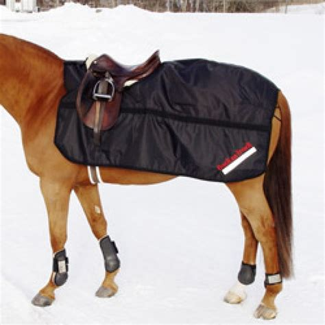 back on track rugs for horses back on track waterproof exercise rug therapeutic exercise rug