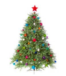 Christmas Tree Pictures by The Best Of Pinterest Christmas Trees