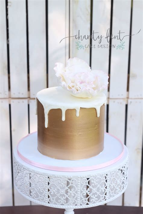 Simple Cute Cake   Charity Fent Cake Design