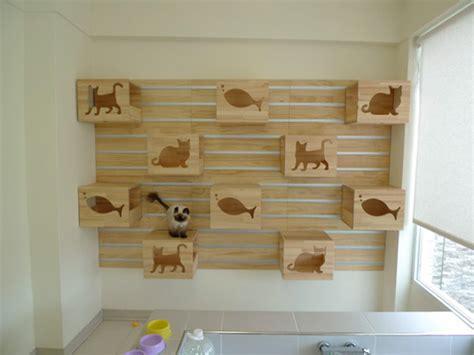 cat wall shelves climbing magnificent modular cat climbing wall hauspanther