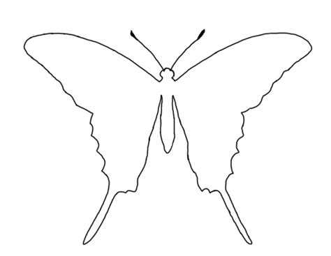 template drawing photos of butterfly outline template cut out 2 gclipart