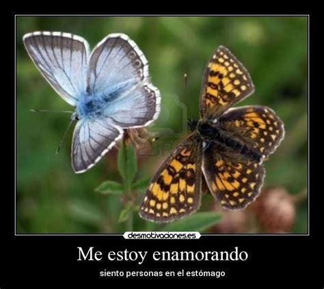 imagenes de dos mariposas juntas me estoy enamorando desmotivaciones