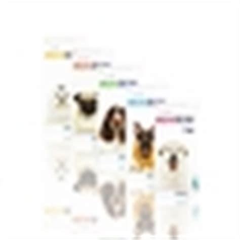 bravecto for dogs 22 44 lbs bravecto flea tick