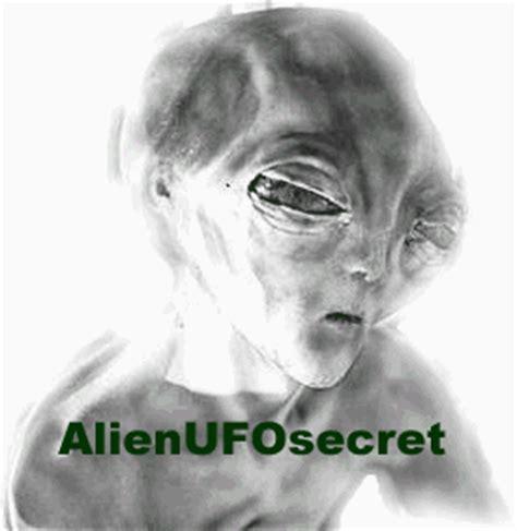 emp hoax books tr3b tr 3b tr3 b astra locust ufo fs2002 simulator