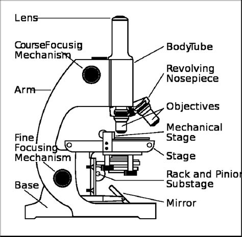Parts Of A Microscope Worksheet Answers by Parts Of A Microscope Worksheet A Quot Parts Of