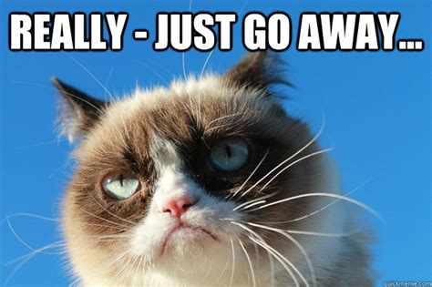 Go Away Meme - grumpy cat just go away memes quickmeme