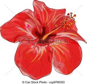 vecteurs de hibiscus vecteur rouges fleur image