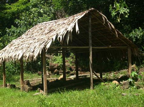 hängematte zu verkaufen zu verkaufen traumfinca mit 40 ha am ortsrand cahuita