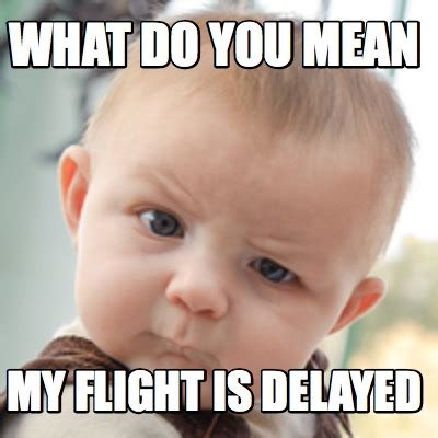 What Do You Mean Memes - meme creator what do you mean my flight is delayed meme
