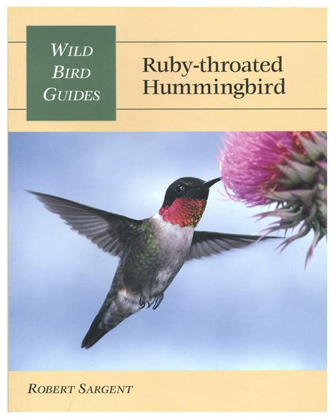 ruby the parakeet books stackpole books bird guides ruby throated hummingbird